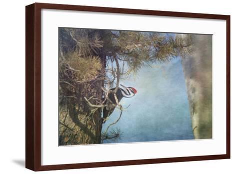 Big Red-Roberta Murray-Framed Art Print