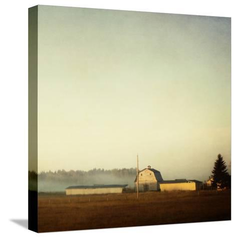Sun on the Barn-Roberta Murray-Stretched Canvas Print