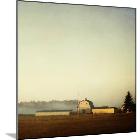 Sun on the Barn-Roberta Murray-Mounted Photographic Print