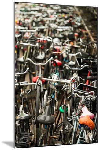 Amsterdam's Fietsflat II-Erin Berzel-Mounted Photographic Print
