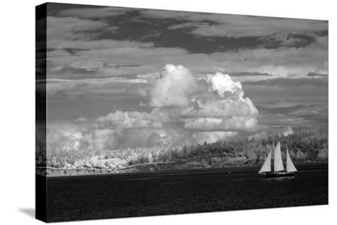 Port Townsend Sailboat I-George Johnson-Stretched Canvas Print