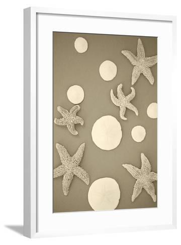 Starfish and Sand Dollars II-Karyn Millet-Framed Art Print