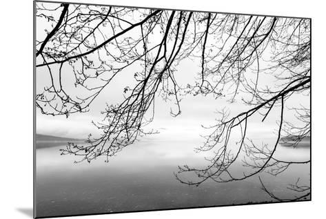 Seabeck Winter II-Kathy Mahan-Mounted Photographic Print