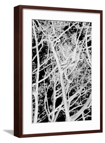 Tree Scatter-Karyn Millet-Framed Art Print