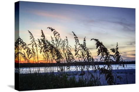 Masonboro Sunset II-Alan Hausenflock-Stretched Canvas Print