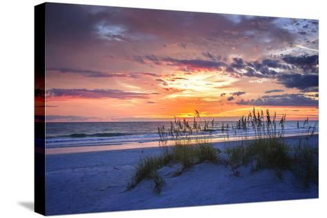 September Sunrise I-Alan Hausenflock-Stretched Canvas Print