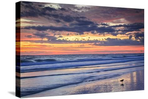 Ragged Sunrise I-Alan Hausenflock-Stretched Canvas Print