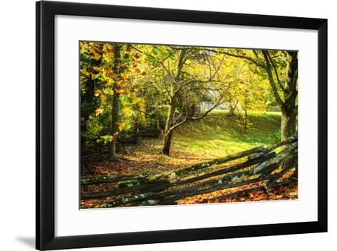 Backyard Color II-Alan Hausenflock-Framed Art Print