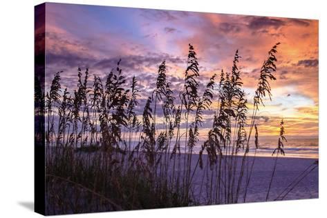 Ragged Sunrise III-Alan Hausenflock-Stretched Canvas Print