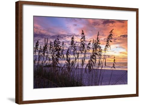 Ragged Sunrise III-Alan Hausenflock-Framed Art Print