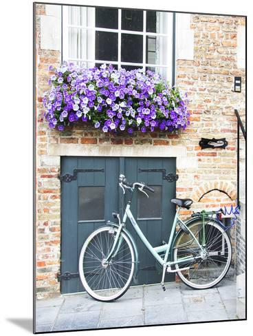 Brugge Door and Bicycle-George Johnson-Mounted Photographic Print