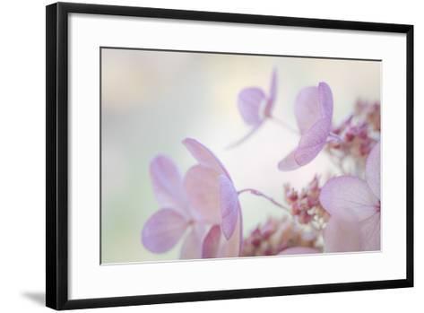 Pink Diamond II-Kathy Mahan-Framed Art Print