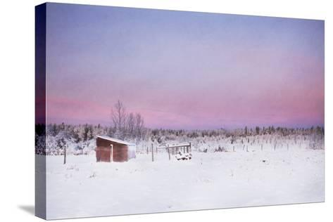 After the Storm-Roberta Murray-Stretched Canvas Print