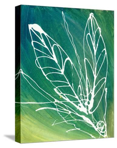 Leaf Void I-Arielle Adkin-Stretched Canvas Print