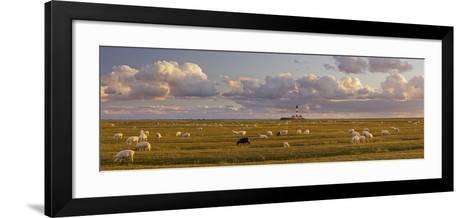 Sheep, Lighthouse of Westerhever (Municipality), Schleswig-Holstein, Germany-Rainer Mirau-Framed Art Print