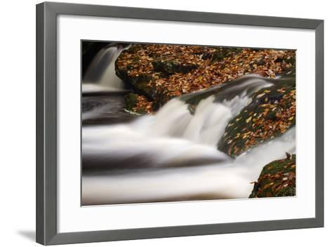 Belgium, High Fens, Nature Reserve High Fens-Eifel-Andreas Keil-Framed Art Print