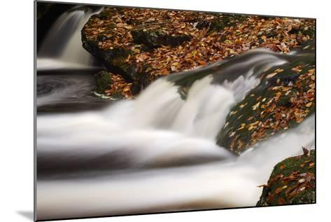Belgium, High Fens, Nature Reserve High Fens-Eifel-Andreas Keil-Mounted Photographic Print