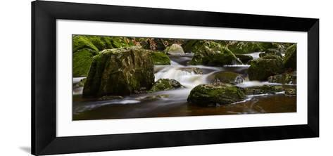 Belgium, High Fens, Hautes Fagnes, Nature Reserve High Fens-Eifel, Tros Marets Brook-Andreas Keil-Framed Art Print