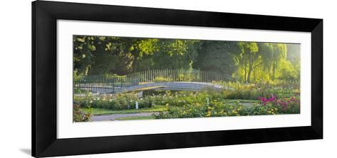Rose Patches, Doblhoffpark, Baden Near Vienna, Lower Austria, Austria-Rainer Mirau-Framed Art Print