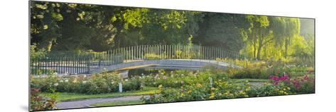 Rose Patches, Doblhoffpark, Baden Near Vienna, Lower Austria, Austria-Rainer Mirau-Mounted Photographic Print