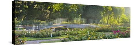 Rose Patches, Doblhoffpark, Baden Near Vienna, Lower Austria, Austria-Rainer Mirau-Stretched Canvas Print