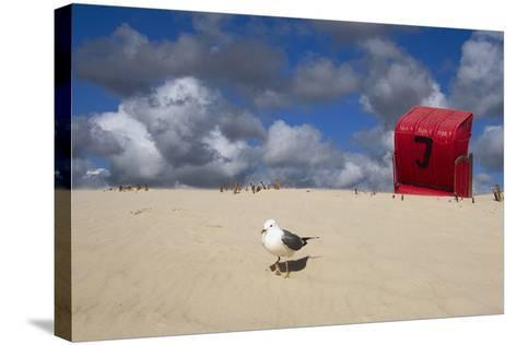 Red Beach Chair in the Dunes, Gull-Uwe Steffens-Stretched Canvas Print