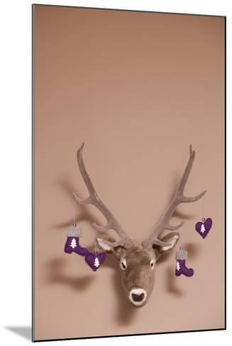 Artificial Deer Head, Tag, Christmas Tag-Nikky Maier-Mounted Photographic Print
