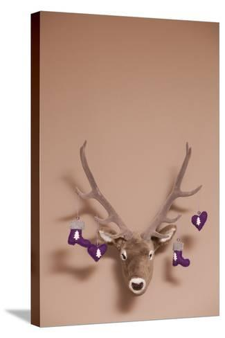 Artificial Deer Head, Tag, Christmas Tag-Nikky Maier-Stretched Canvas Print