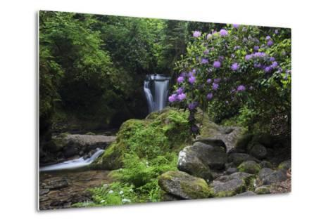 Germany, Baden-WŸrttemberg, Black Forest, Grobbach, Geroldsau Waterfall-Andreas Keil-Metal Print