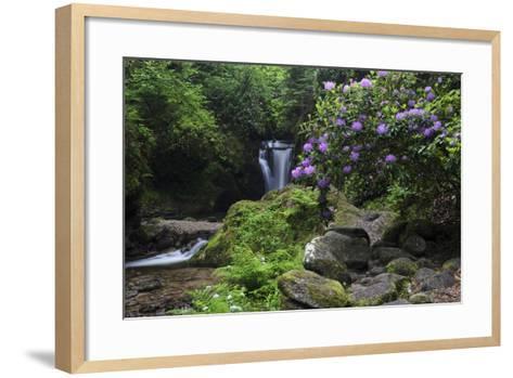 Germany, Baden-WŸrttemberg, Black Forest, Grobbach, Geroldsau Waterfall-Andreas Keil-Framed Art Print