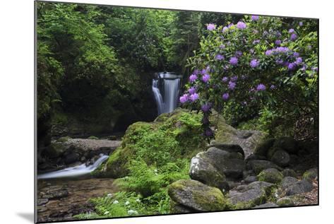 Germany, Baden-WŸrttemberg, Black Forest, Grobbach, Geroldsau Waterfall-Andreas Keil-Mounted Photographic Print
