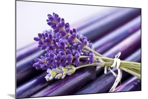 Lavender, Blossoms, Smell, Bunch-Andrea Haase-Mounted Photographic Print