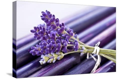 Lavender, Blossoms, Smell, Bunch-Andrea Haase-Stretched Canvas Print