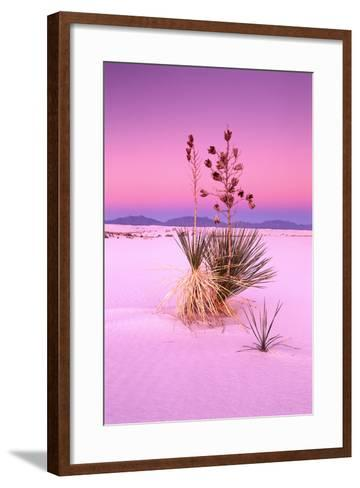 USA, New Mexico, of White Sand National Monument, Desert, Soaptree Yucca-Frank Lukasseck-Framed Art Print