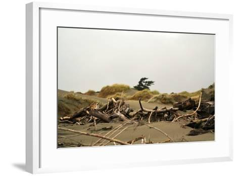 New Zealand, North Island, Foxton Beach, Stranded Goods-Catharina Lux-Framed Art Print