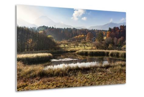 Autumn at Aichwaldsee-Simone Wunderlich-Metal Print