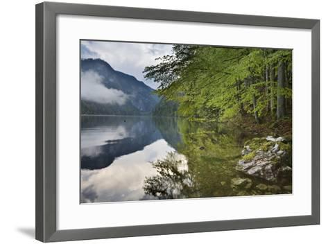 Austria, Styria, Salzkammergut (Region), Toplitzsee (Lake), Morning Mood, Lake, Shore-Rainer Mirau-Framed Art Print