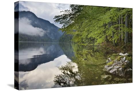 Austria, Styria, Salzkammergut (Region), Toplitzsee (Lake), Morning Mood, Lake, Shore-Rainer Mirau-Stretched Canvas Print