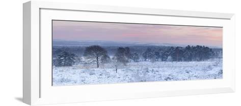 Germany, North Rhine-Westphalia, Wahner Heide, View from the Telegrafenberg in Winter at Sunrise-Andreas Keil-Framed Art Print