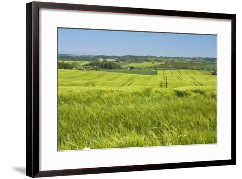 Denmark, Funen, Wheat Fields, Near Horne-Chris Seba-Framed Art Print