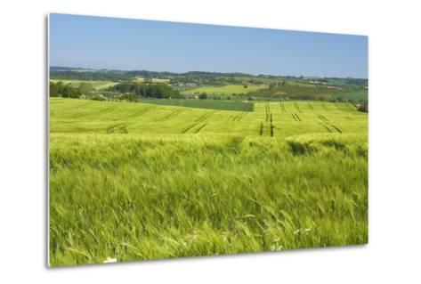 Denmark, Funen, Wheat Fields, Near Horne-Chris Seba-Metal Print