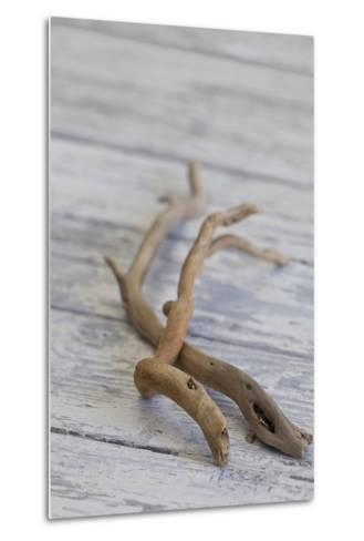 Driftwood, Wood, Branches, Still Life-Andrea Haase-Metal Print