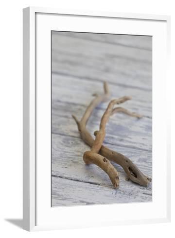 Driftwood, Wood, Branches, Still Life-Andrea Haase-Framed Art Print