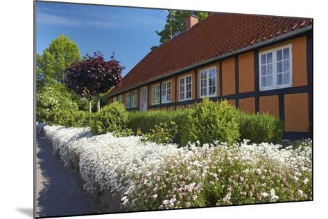 Denmark, Funen, Horne, House Facade, Wall, Flowers-Chris Seba-Mounted Photographic Print