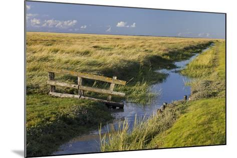 Fence on a Salt Meadow, Westerhever (Municipality), Schleswig-Holstein, Germany-Rainer Mirau-Mounted Photographic Print
