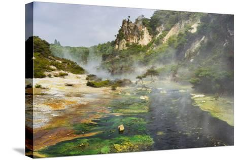 Hot Springs, Waimangu Volcanic Valley, Rotorua, Bay of Plenty, North Island, New Zealand-Rainer Mirau-Stretched Canvas Print