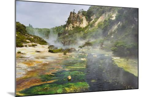 Hot Springs, Waimangu Volcanic Valley, Rotorua, Bay of Plenty, North Island, New Zealand-Rainer Mirau-Mounted Photographic Print