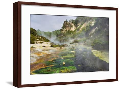 Hot Springs, Waimangu Volcanic Valley, Rotorua, Bay of Plenty, North Island, New Zealand-Rainer Mirau-Framed Art Print
