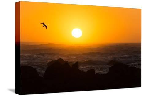 South Africa, Garden Route, Cape Agulhas, Sundown-Catharina Lux-Stretched Canvas Print