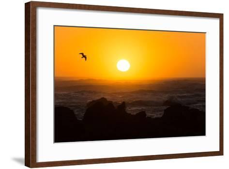 South Africa, Garden Route, Cape Agulhas, Sundown-Catharina Lux-Framed Art Print